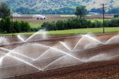 Irrigation — Stock Photo