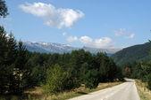 Road to the mountain — Stock Photo