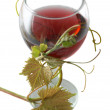 Stock Photo: Red wine with grape leave