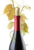 Red Wine Bottle — Stock Photo