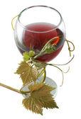 красное вино с виноградом оставить — Стоковое фото