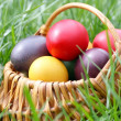Easter eggs — Stock Photo #4564033