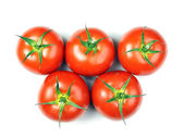 Tomatoes olimpic — Stock Photo