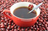 Dzika róża herbaty — Zdjęcie stockowe