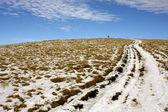 Winter mountain road — Stock Photo