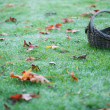Empty Basket On Grass With Leaves Horizontal — Stock Photo #4174907