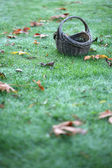 Empty Basket On Grass With Leaves — Stock Photo