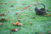 Empty Basket On Grass With Leaves Horizontal — Stock Photo