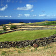Fields on Sao Jorge island — Stock Photo