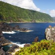 Coast on Sao Jorge island — Stock Photo