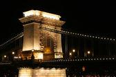 Budapeşte'de gece köprü — Stok fotoğraf