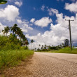 Tongan Road — Stock Photo