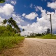 Tongan Road - Stock Photo