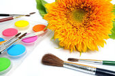 Sunflower and paintbox — Stock Photo