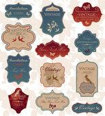 Zestaw vintage etykieta granica — Wektor stockowy