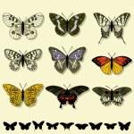 Vintage butterflies set & butterflies silhouettes — Stock Vector #5208732