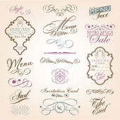 Elementos de diseño caligráfico — Vector de stock