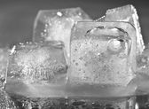 Ice cube — Stock Photo