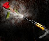 Kalashnikov rose — Stock Photo