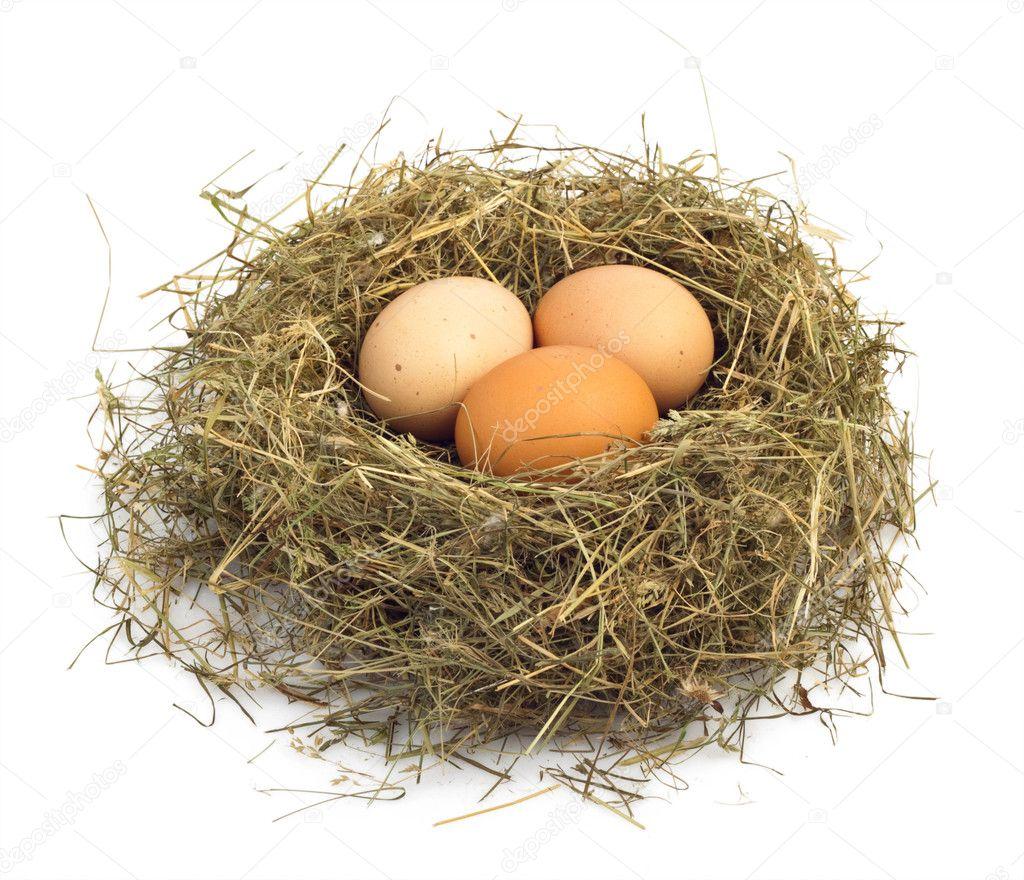 Egg Nests Recipes — Dishmaps