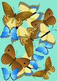 Butterflies. — Stock Vector