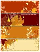 Autumnal banners — Stock Vector
