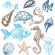 Marine life collection - Stock Vector