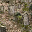 Ancient cemetery - Photo