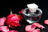 Rose essential — Стоковое фото