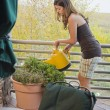 Woman watering plants — Stock Photo #4194251