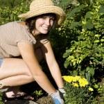 Woman in the yard gardening — Stock Photo #4202464