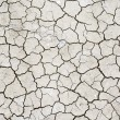 Texture of dry cracked soil - 图库照片