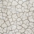 Stock Photo: Texture of dry cracked soil
