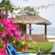Постер, плакат: Mexican cabana by the beach and water