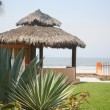 Mexican cabana by the beach and water — Stock Photo #5178053