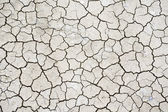 Texture of dry cracked soil — Foto Stock