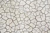 Textuur van droge, gebarsten bodem — Stockfoto