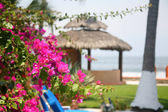 Mexican cabana by the beach and water — Stock Photo