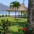Flowers overlooking a tropical mexican cabana - Stock Photo