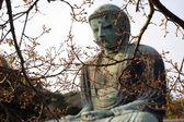 Buddha gigante di primavera — Foto Stock