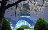 Tokyo spring — Stock Photo