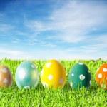 Easter eggs — Stock Photo #4829193