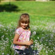 Young girl on meadow — Stock Photo