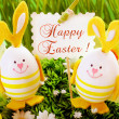 Easter decoration in grass — Stock Photo