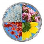 orologio con quattro stagioni dell'anno — Foto Stock