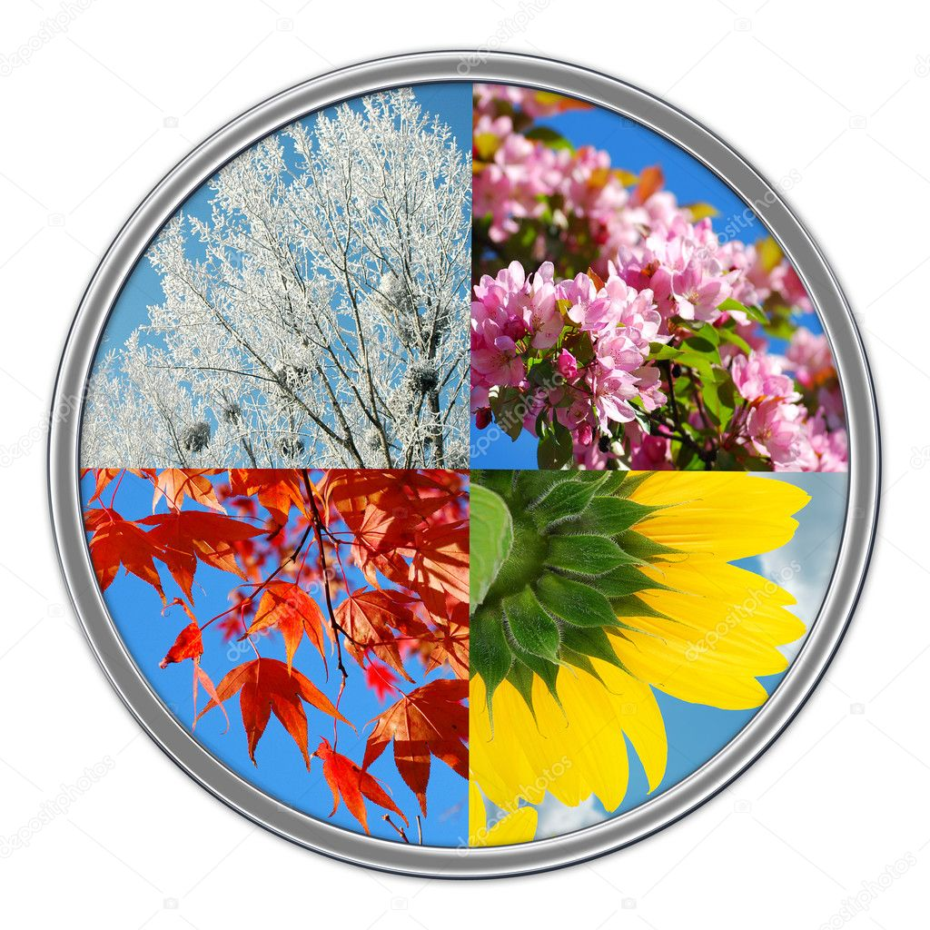 Nature collage in round shape with  four seasons of the year isolated on white  Stock Photo #5294947