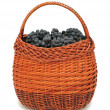 Fresh grapes in a basket, isolated — Stock Photo