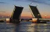 Night view of Palace Bridge — Stock Photo