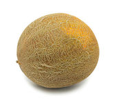 Whole uzbek yellow melon, isolated — Stock Photo
