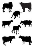 From a series Silhouettes. Animals. Cow — Stock Vector